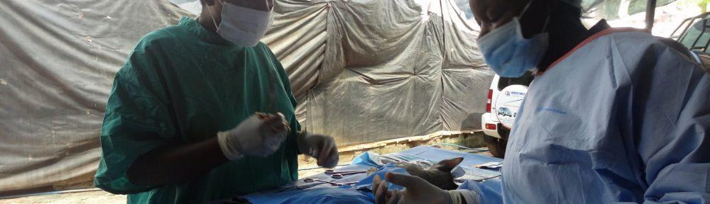 Tanzania Animal Welfare Society (TAWESO)